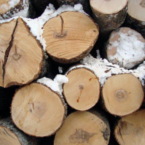 Miért mondjuk a fa fűtést az…